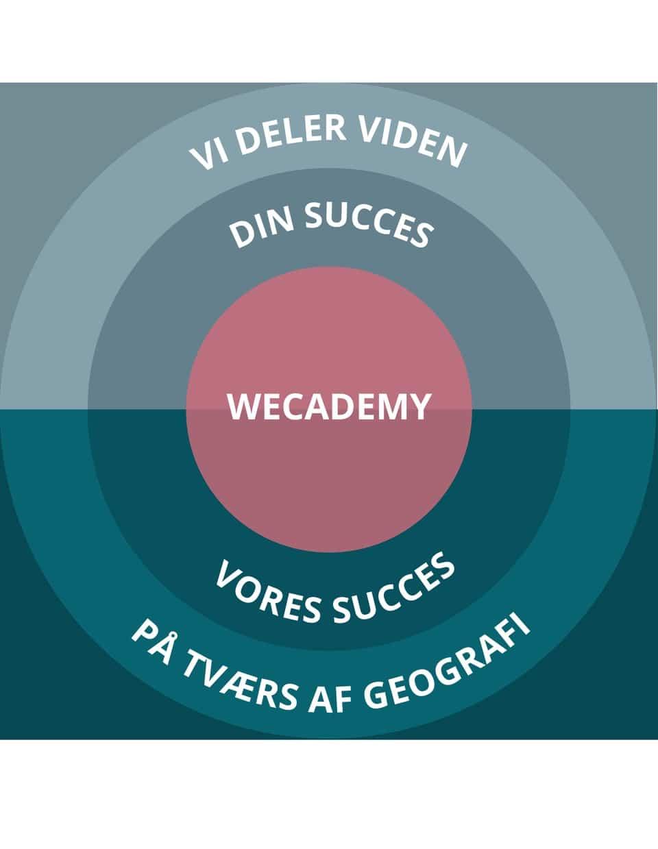 Wecademy kan skabe succes på dine online kurser